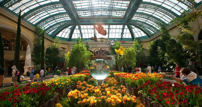 Conservatory & Botanical Gardens at Bellagio Bellagio_19991